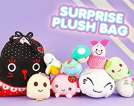 Surprise Plush Bag!