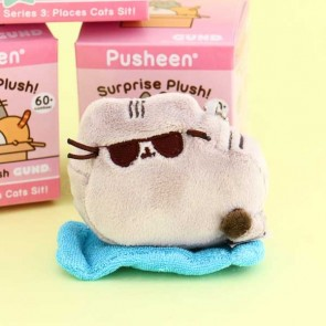 Pusheen Blind Box Series 3 - Places Cats Sit