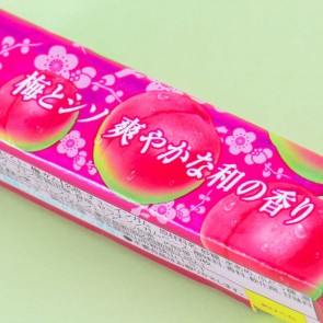 Lotte Chewing Gum - Sour Plum